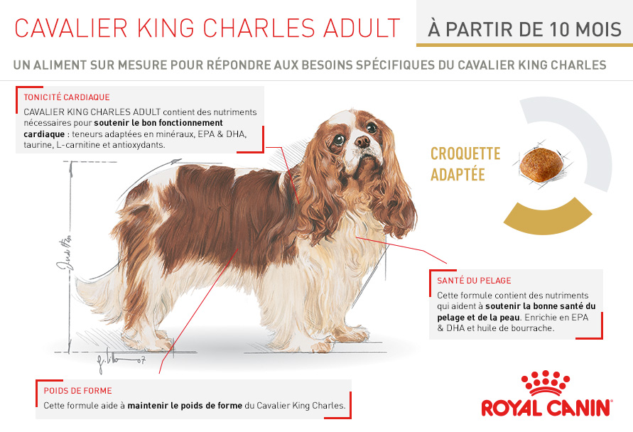 Royal canin mélange naturel adulte