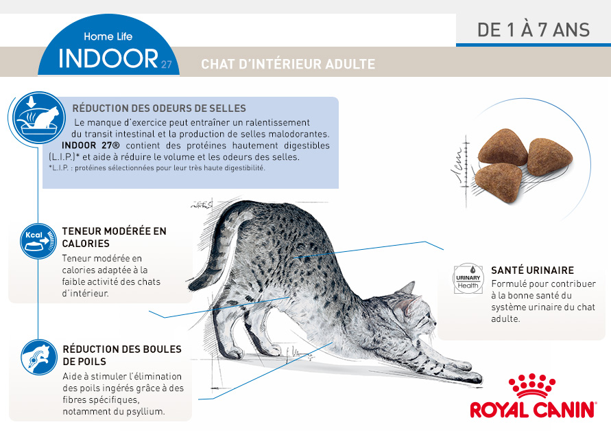 royal canin croquettes pour chat indoor 27 wanimo. Black Bedroom Furniture Sets. Home Design Ideas