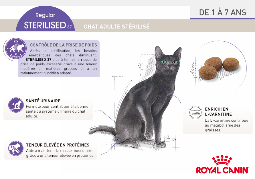 royal canin sterilised 37 croquettes pour chat wanimo. Black Bedroom Furniture Sets. Home Design Ideas