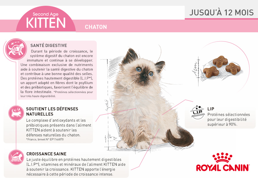 royal canin croquettes pour chat kitten wanimo. Black Bedroom Furniture Sets. Home Design Ideas