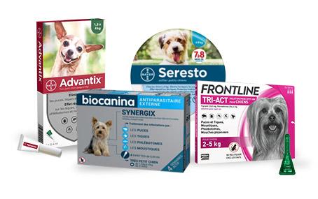Antiparasitaires pour chien