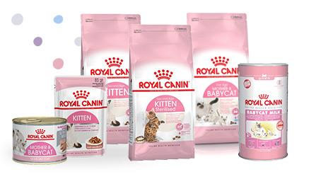 ROYAL CANIN® Kitten