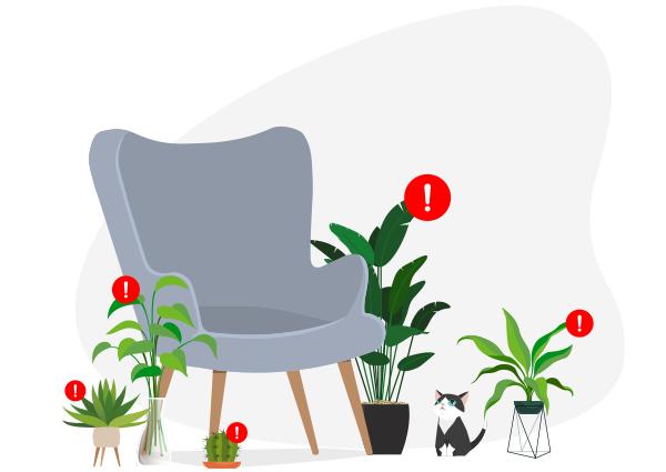 certaines plantes sont toxiques pour les animaux