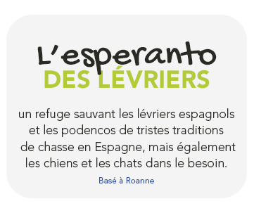 L'esperanto des lévriers