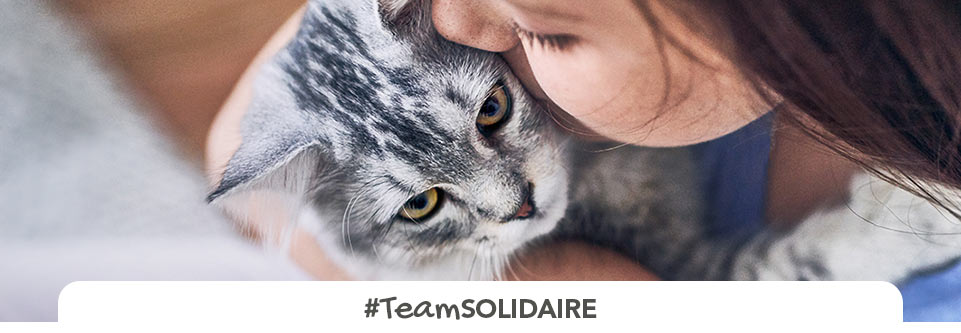 team solidaire