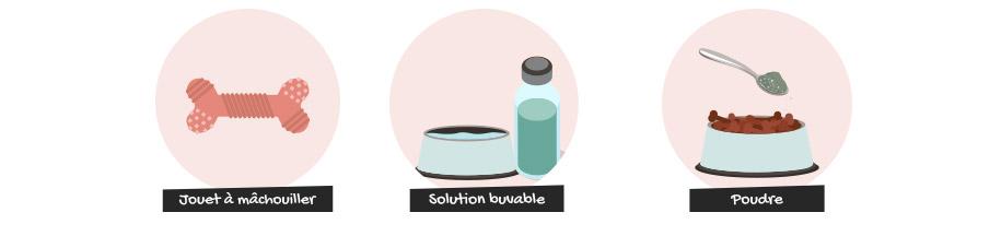 Jouets à mâchouiller, solutions buvables ou poudres contribient à une bonne hygiène bucco-dentaire