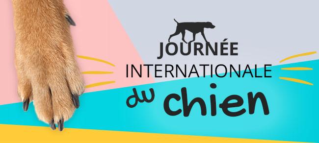 Journée internationale du chien : 24H de promos exceptionnelles !
