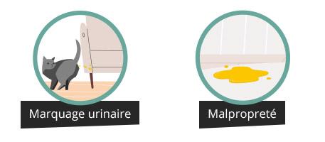 Marquage urinaire et malpropreté