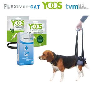 Soins et accessoires offerts : Flexivet Cat, Yoos, TVM