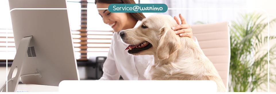 Les services Flex