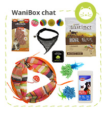WaniBox chat