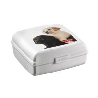 Accessoires chien - Petlife Snap Box
