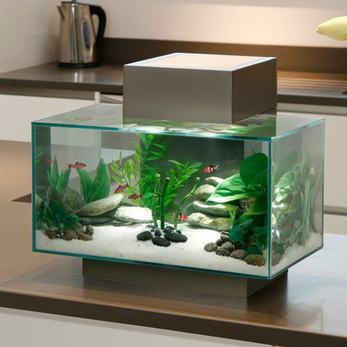 Aquarium fluval edge led aquarium fluval wanimo for Aquarium edge