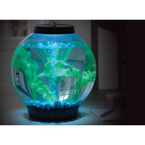Aquarium baby biorb moonlight 15 l aquarium biorb wanimo for Jouet aquarium poisson