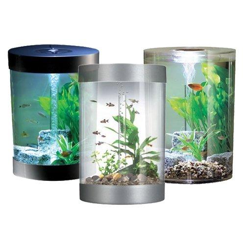 Aquarium poissons chez for Jouet aquarium poisson