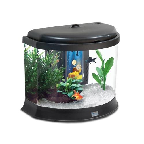 aquarium 20 litres mundu fr