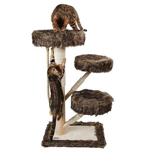 arbre chat et griffoir arbre chat zamunda pour chats. Black Bedroom Furniture Sets. Home Design Ideas