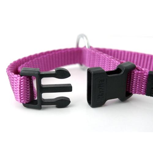 Collier, laisse et harnais - Colliers en nylon XS pour chiens