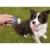 Comportement éducation -  Multi-Clicker pour chiens