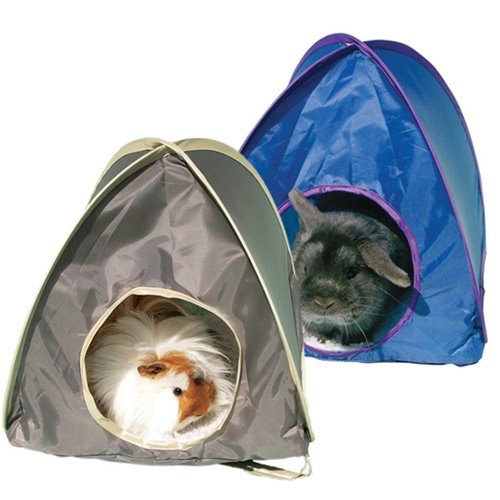 tente pop up tente pour rongeur et furet wanimo. Black Bedroom Furniture Sets. Home Design Ideas