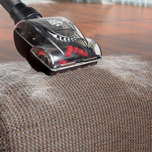 brosses d 39 aspirateur entretien des moquettes fauteuils tapis dirt devil wanimo. Black Bedroom Furniture Sets. Home Design Ideas