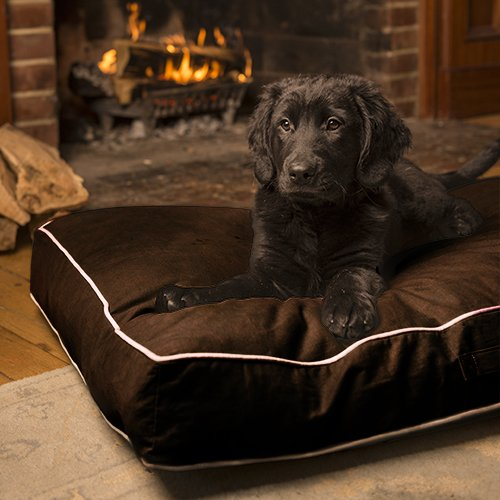 matelas anti salissures nano techno canvas matelas pour chien dog gone smart wanimo. Black Bedroom Furniture Sets. Home Design Ideas
