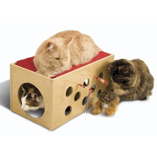 Chat animalerie en ligne croquette et accessoire pour chat arbre chat et liti re sur wanimo - Maison pour chat en bois ...
