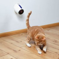 Jouet pour chat - Laser Moving Light
