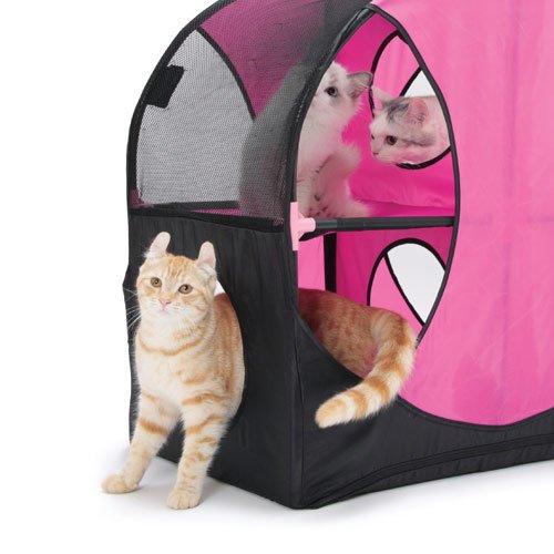 roue du bonheur aire de jeu pour chat wanimo. Black Bedroom Furniture Sets. Home Design Ideas