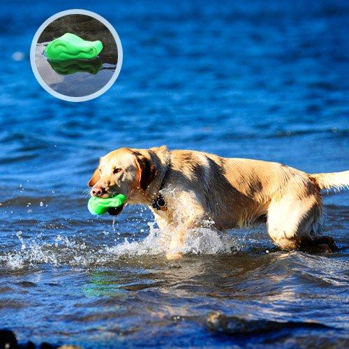 Balle flottante Alligator - Balle pour chien - Chuckit