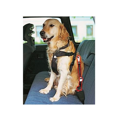 laisse de voiture pour chien accessoires auto pour chien wanimo. Black Bedroom Furniture Sets. Home Design Ideas