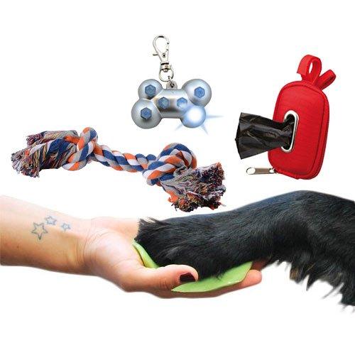 pack chien citadin accessoires pour chien wanimo. Black Bedroom Furniture Sets. Home Design Ideas
