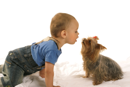 Pr parer votre chien l 39 arriv e d 39 un b b comportement du chien education chiens - Image bebe chien ...