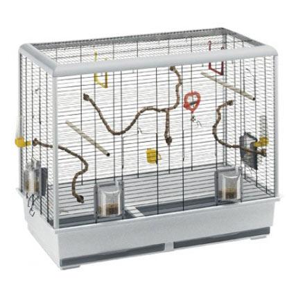 Lire la suite: Choix d'une cage pour votre oiseau
