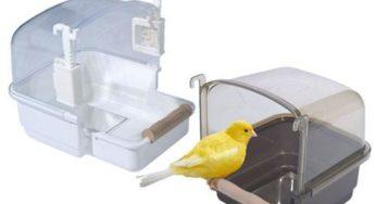 Lire la suite: L'aménagement de la cage de votre oiseau