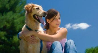 Les vacances avec votre chien