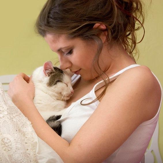 """Résultat de recherche d'images pour """"zoonose chat"""""""