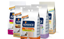 Lire la suite : Aliments Advance pour chat
