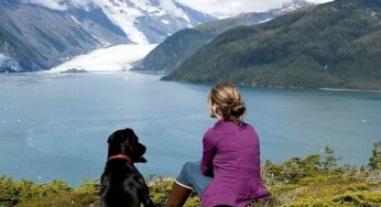 Les vacances avec ou sans son animal