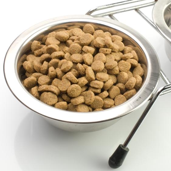 Comment conserver les aliments de mon chien ou de mon chat for Comment conserver les aliments