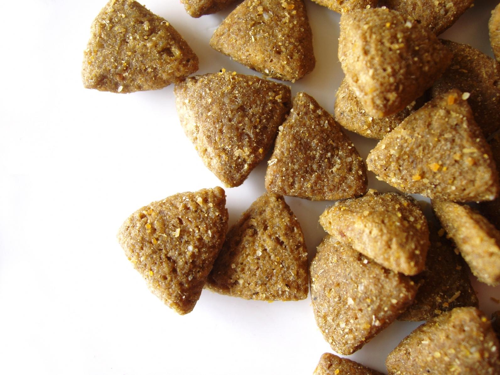 Lire la suite: Que sont les cendres dans les aliments pour animaux ?