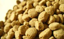 Lire la suite: Pourquoi nourrir son chien avec un aliment médicalisé ?