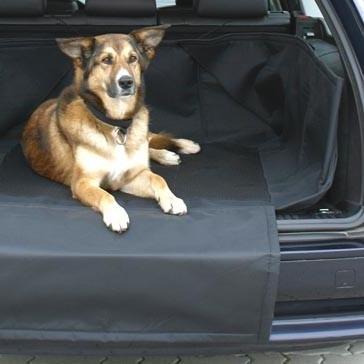 Lire la suite: Prendre la voiture avec son animal
