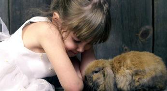 Le lapin et les enfants