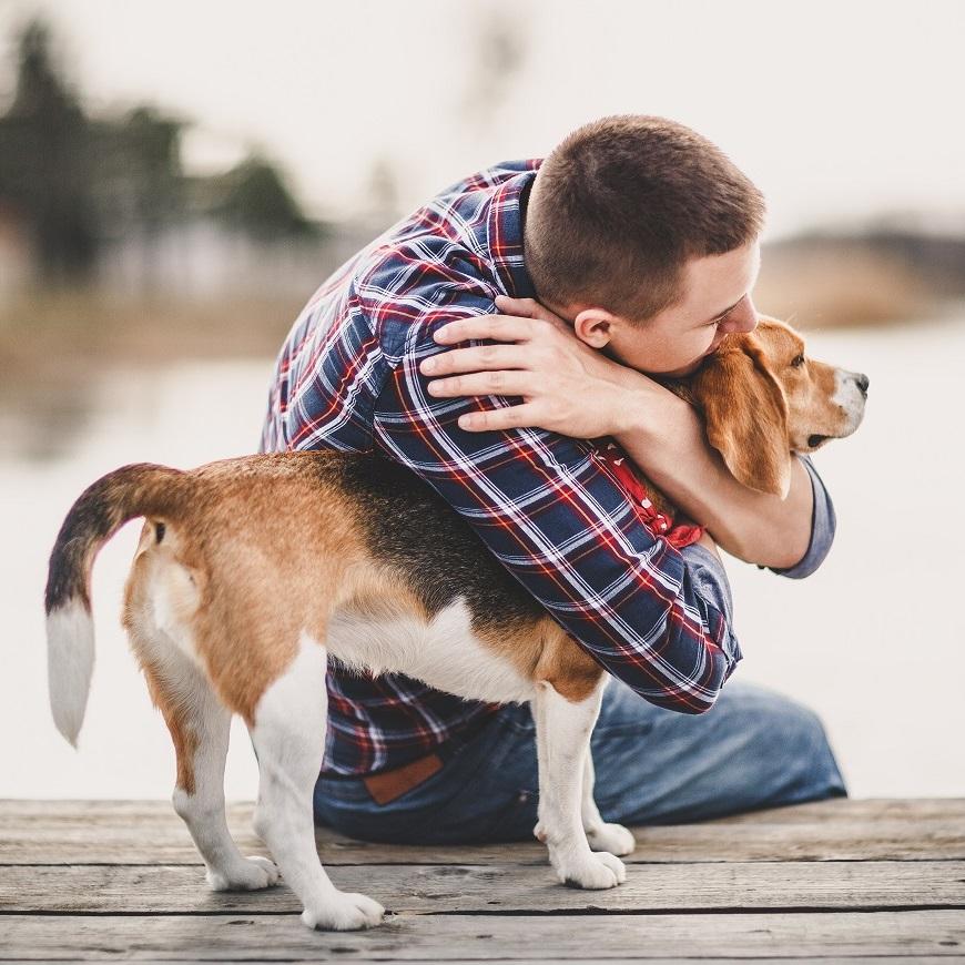 Il n'est pas toujours possible de connaître l'histoire d'un chien avant de l'adopter, il est important de prendre cela en compte
