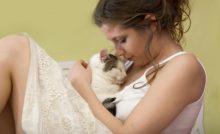 Lire la suite: Pourquoi mon chat me lèche et dort sur moi : les signes d'attachement du chat