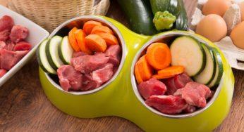Les risques zoonotiques liés à la consommation de viande crue