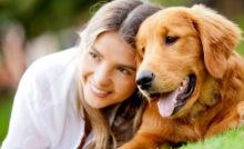 Lire la suite: Relation homme-chien et leadership