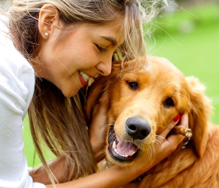 Lire la suite: Peut-on donner du pain à un chien ?