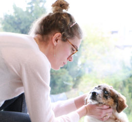 Docteur Vétérinaire Bénédicte Hivin